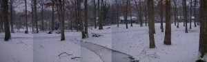 snow01202009_wide_lg